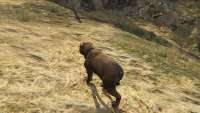 How to become a Rottweiler in GTA 5.