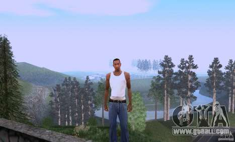 Carl Johnson can talk for GTA San Andreas