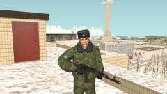 Military in winter uniform