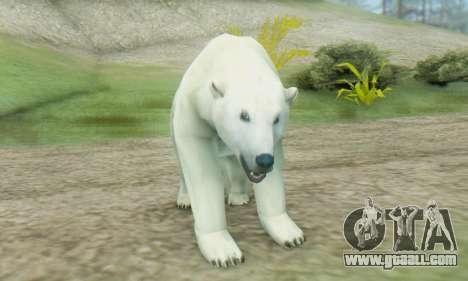 Polar Bear (Mammal) for GTA San Andreas third screenshot