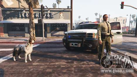 GTA 5 Police Mod 1.0b third screenshot
