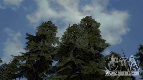 Natural and Realistic ENB for GTA San Andreas forth screenshot