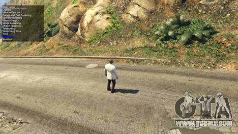 Simple Trainer 2.1 for GTA 5