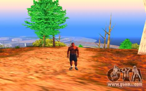 Summer Colormod for GTA San Andreas third screenshot