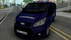 Ford Transit Lite Jandarmeria Romana
